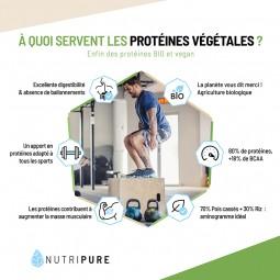 proteine vegetale musculation