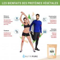 bienfait protéine végétale